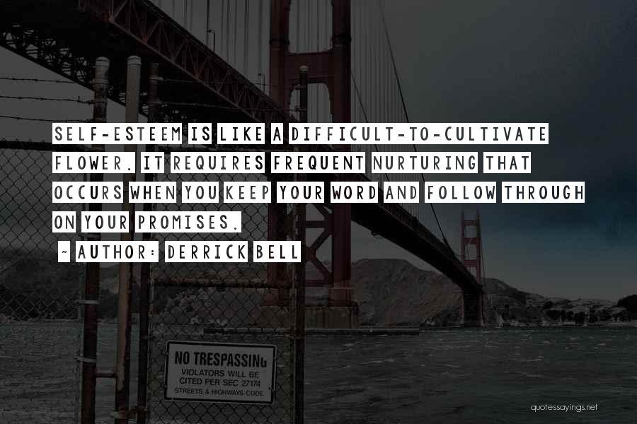Derrick Bell Quotes 528111