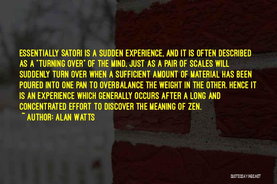 Described Quotes By Alan Watts