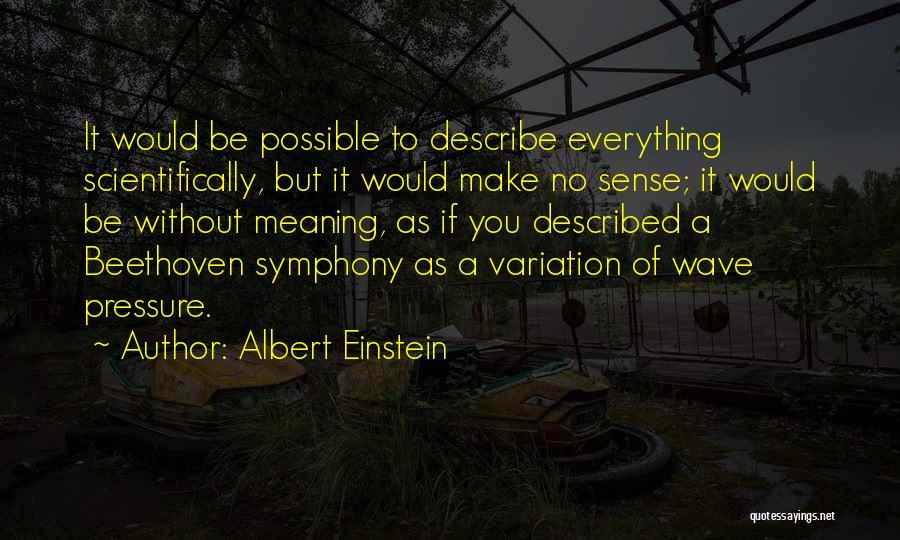 Described Quotes By Albert Einstein