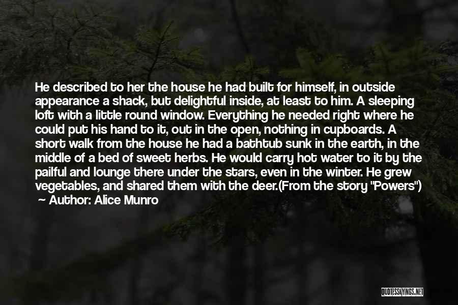 Described Quotes By Alice Munro