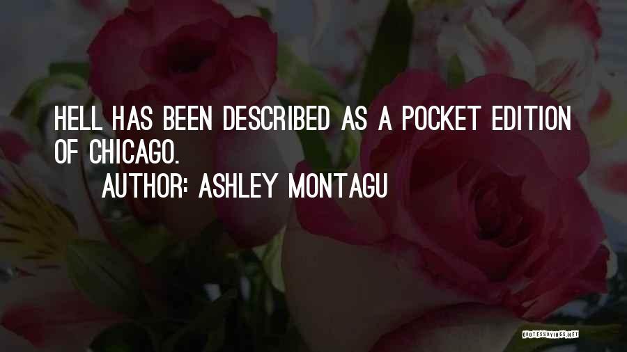 Described Quotes By Ashley Montagu