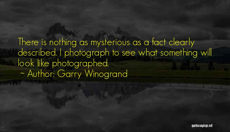Described Quotes By Garry Winogrand