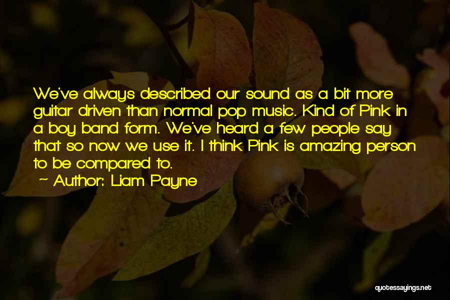 Described Quotes By Liam Payne