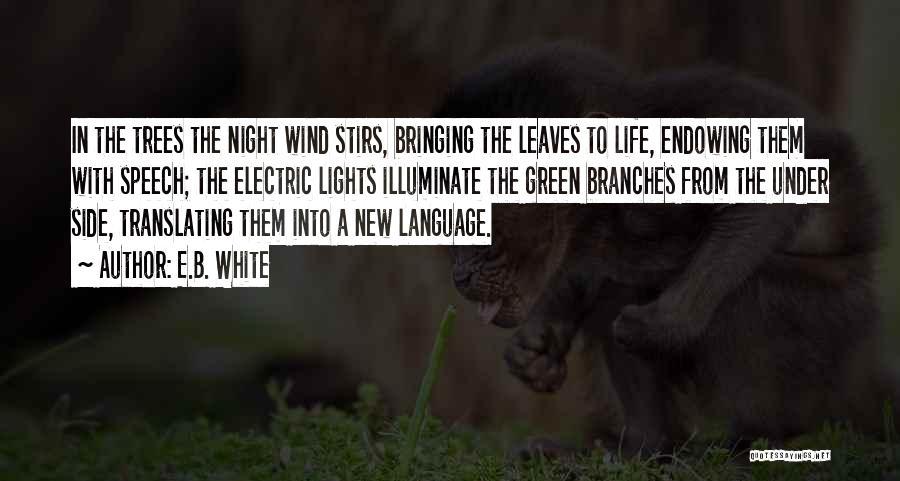 Descriptive Language Quotes By E.B. White