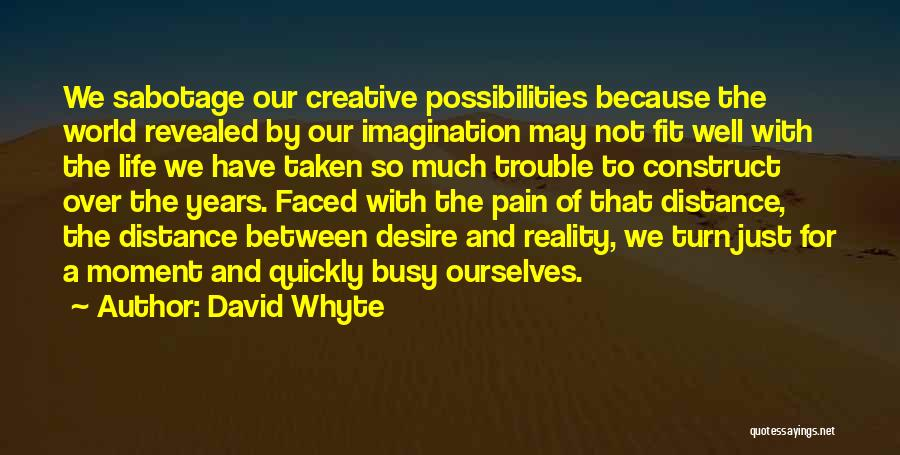 Desire And Pain Quotes By David Whyte