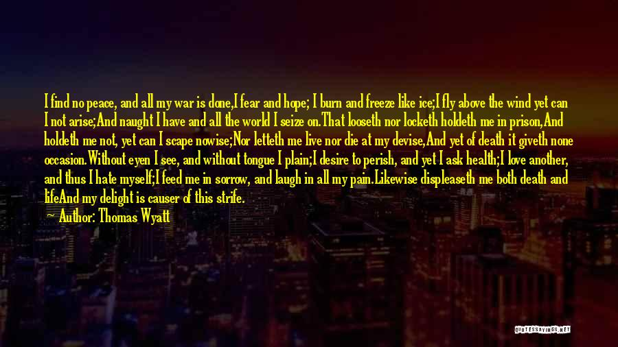 Desire And Pain Quotes By Thomas Wyatt