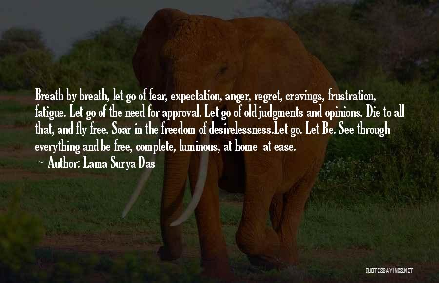 Desire To Fly Quotes By Lama Surya Das