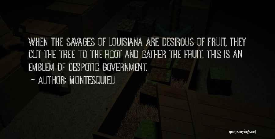 Desirous Quotes By Montesquieu