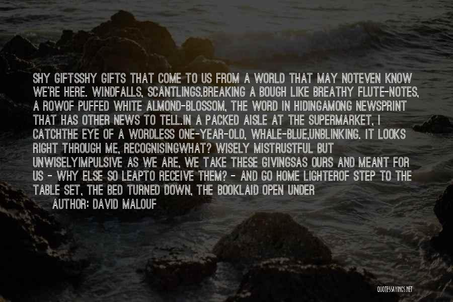 Desk Set Quotes By David Malouf