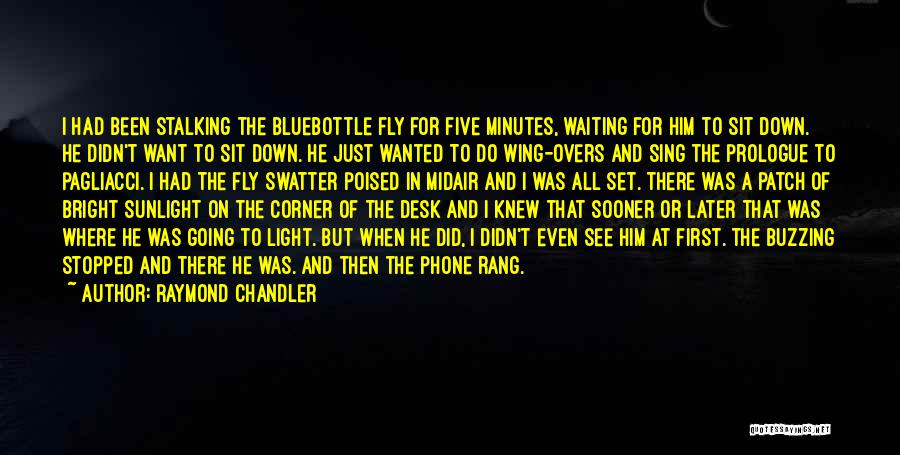 Desk Set Quotes By Raymond Chandler