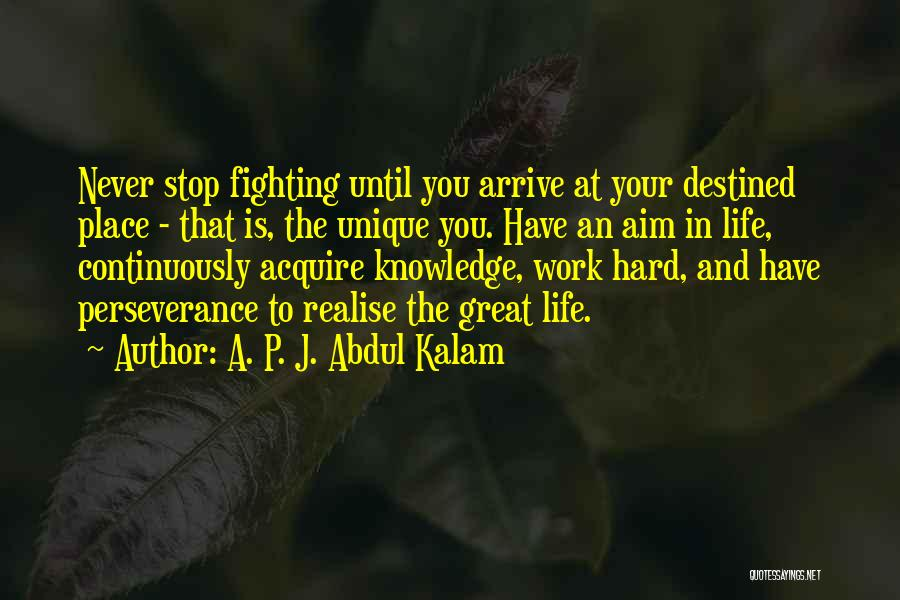 Destined For Great Things Quotes By A. P. J. Abdul Kalam