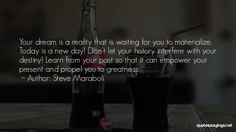 Destiny And Success Quotes By Steve Maraboli