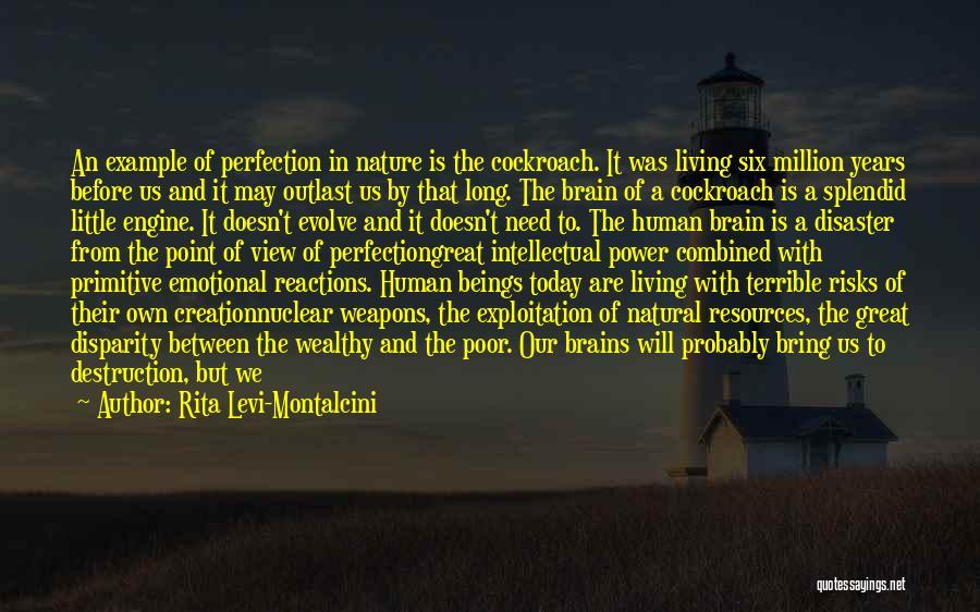 Destruction Before Creation Quotes By Rita Levi-Montalcini