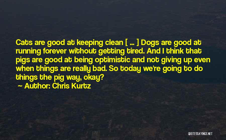 Determination And Not Giving Up Quotes By Chris Kurtz