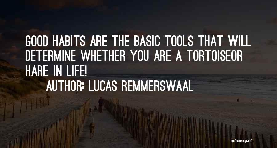 Determine Success Quotes By Lucas Remmerswaal