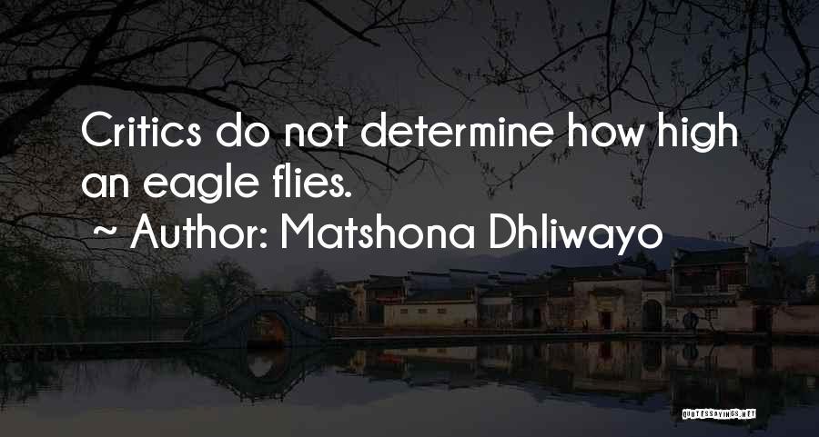 Determine Success Quotes By Matshona Dhliwayo