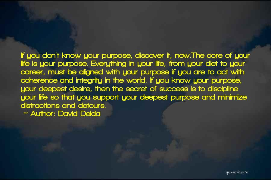Detours In Life Quotes By David Deida