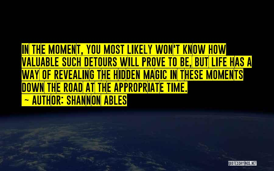 Detours In Life Quotes By Shannon Ables