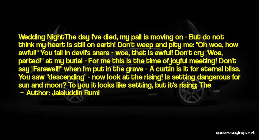 Devil May Cry 5 Quotes By Jalaluddin Rumi