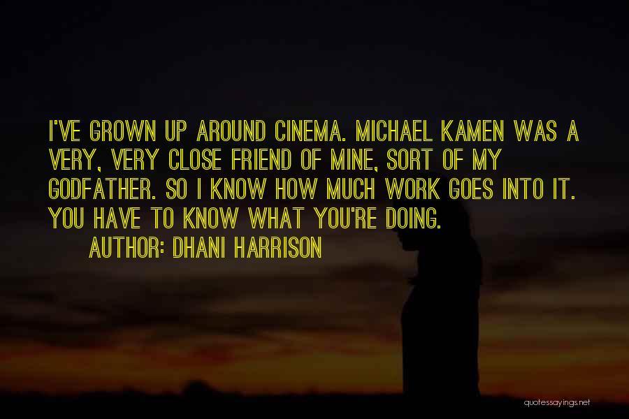 Dhani Harrison Quotes 1257622