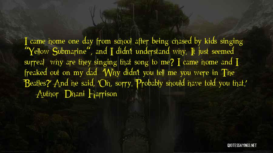 Dhani Harrison Quotes 1626292