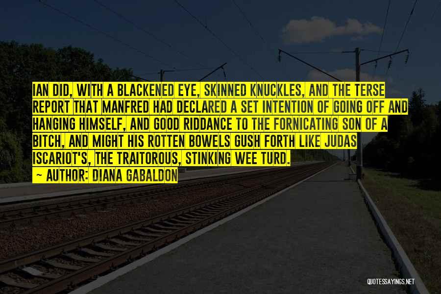 Diana Gabaldon Quotes 1317495