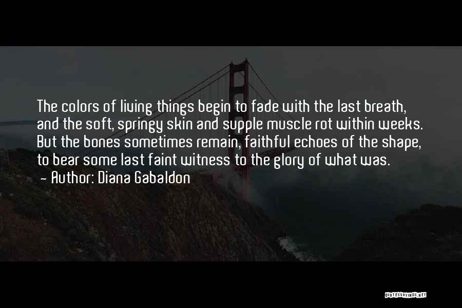 Diana Gabaldon Quotes 1516260
