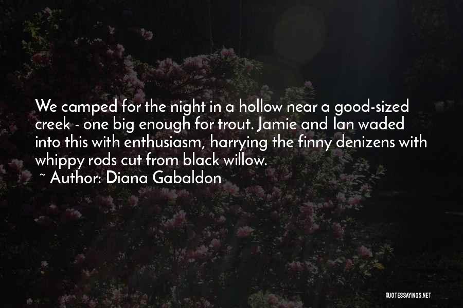 Diana Gabaldon Quotes 1650902