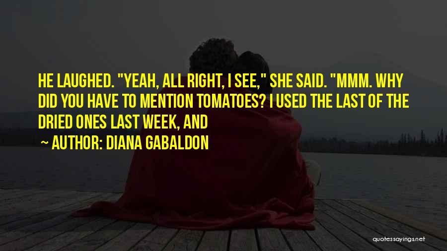 Diana Gabaldon Quotes 228097