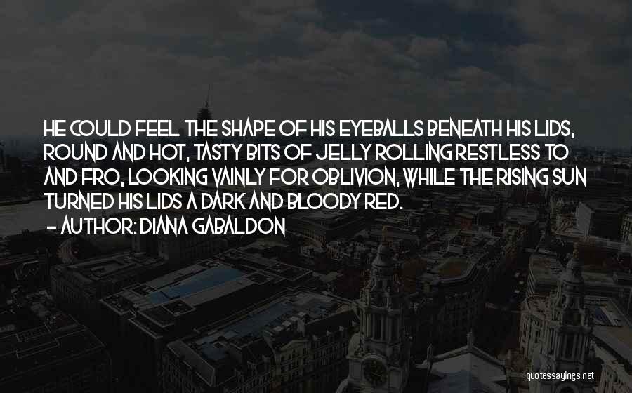 Diana Gabaldon Quotes 809284