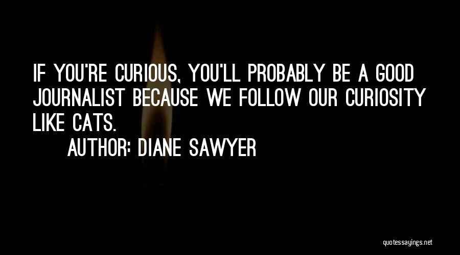 Diane Sawyer Quotes 715041