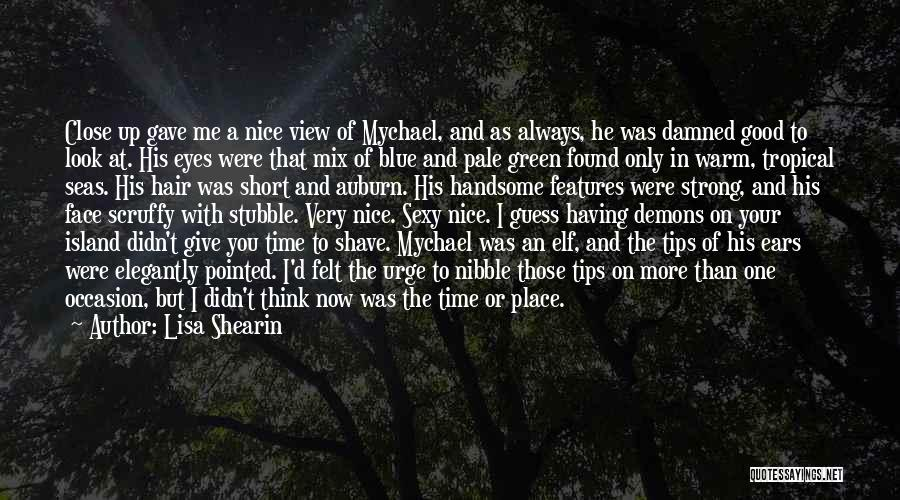 Didn't Give Up Quotes By Lisa Shearin