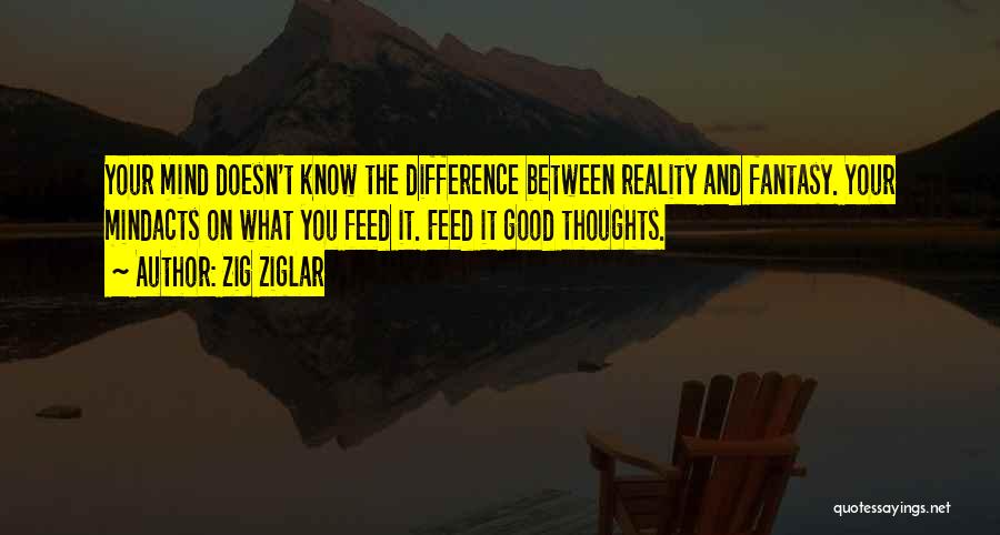 Difference Between Fantasy And Reality Quotes By Zig Ziglar