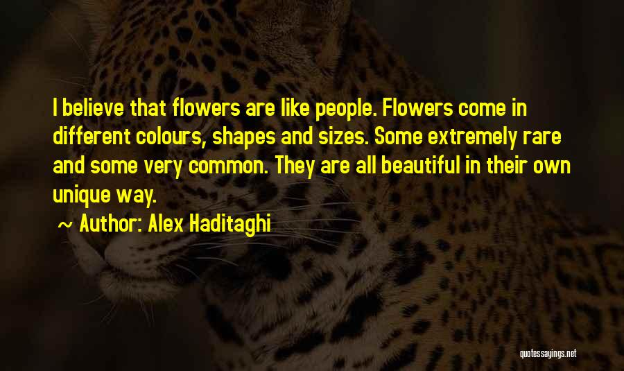 Different Sizes Quotes By Alex Haditaghi