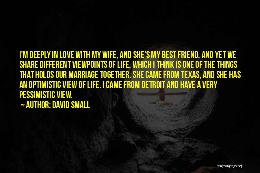 Different Viewpoints Quotes By David Small