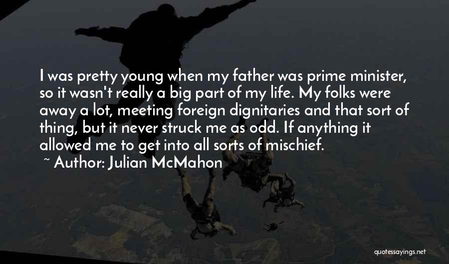Dignitaries Quotes By Julian McMahon