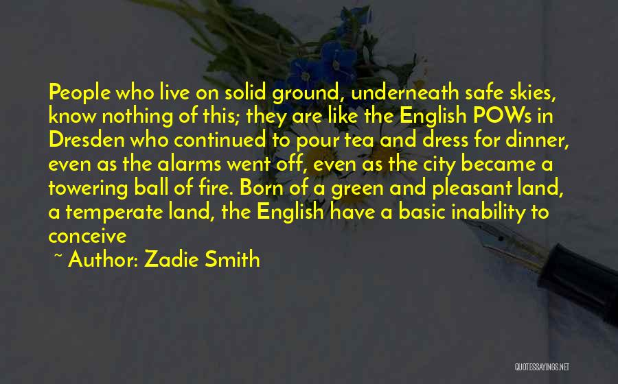 Dinner Quotes By Zadie Smith