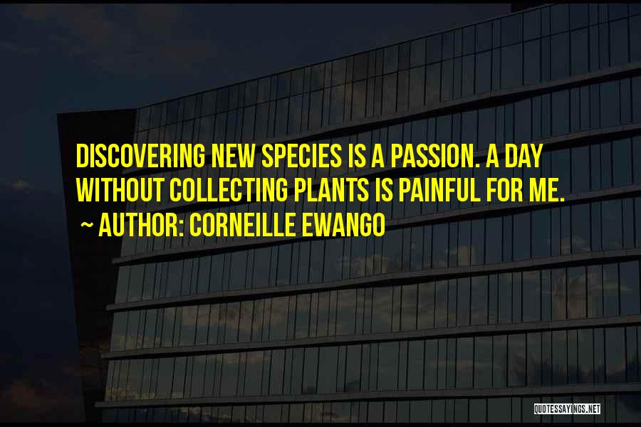 Discovering New Things Quotes By Corneille Ewango