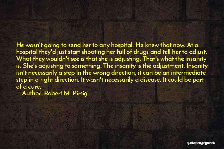 Disease Cure Quotes By Robert M. Pirsig