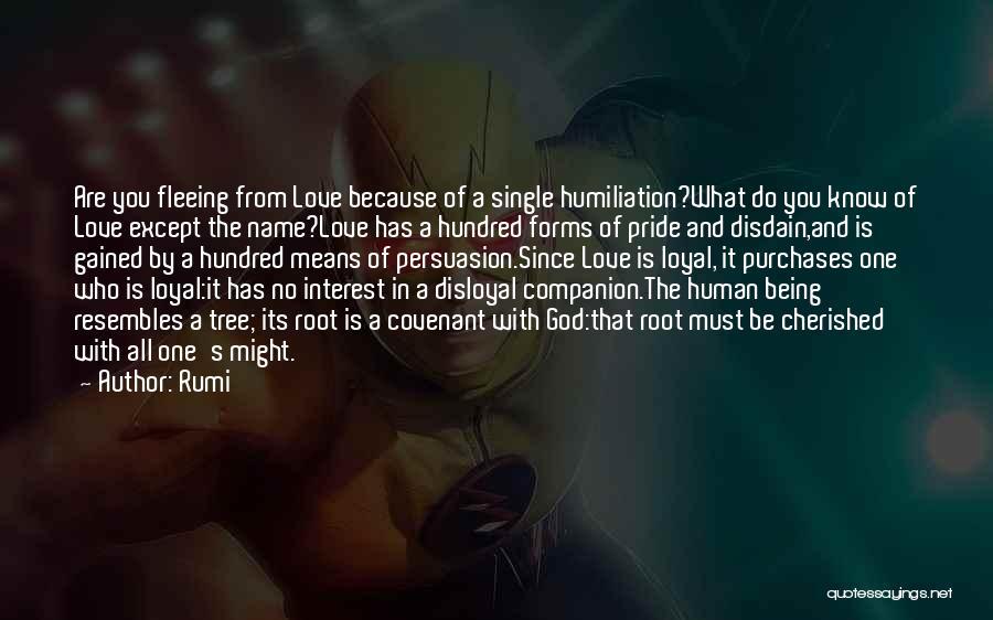Disloyal Quotes By Rumi