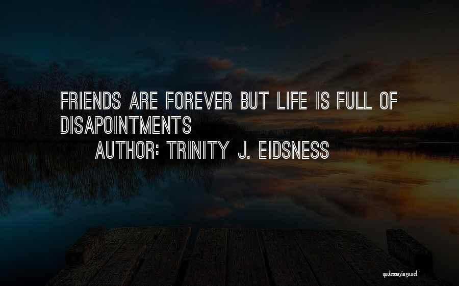Disloyal Quotes By Trinity J. Eidsness