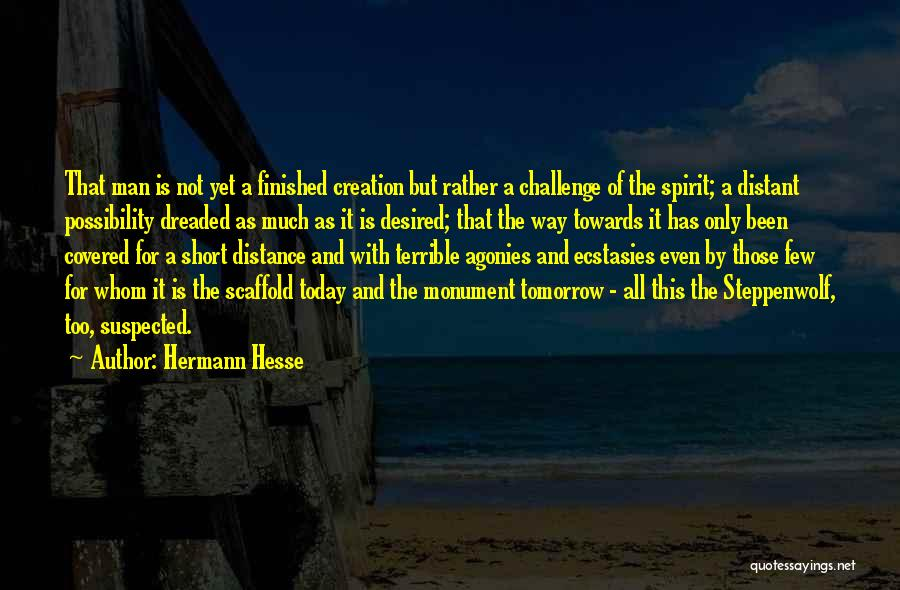 Distance Covered Quotes By Hermann Hesse