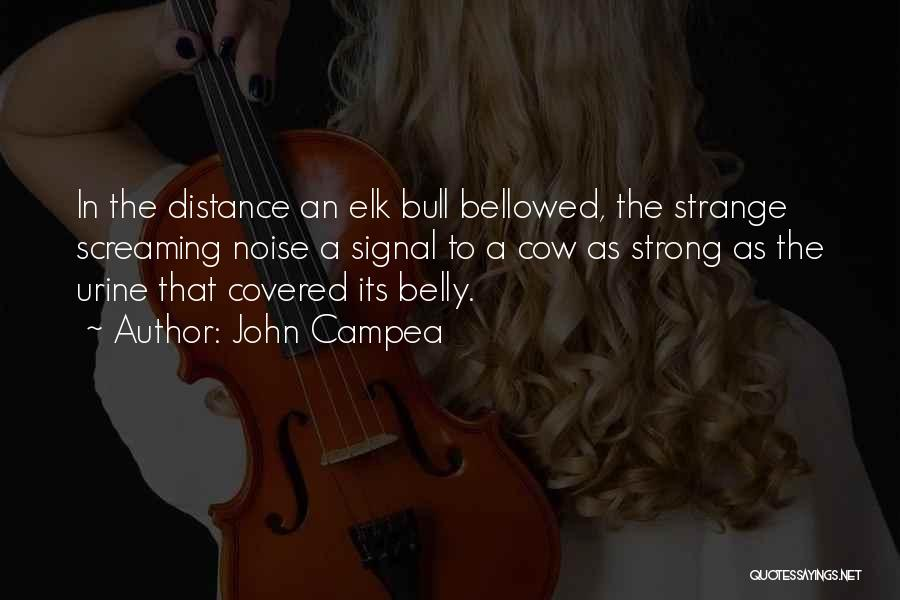 Distance Covered Quotes By John Campea