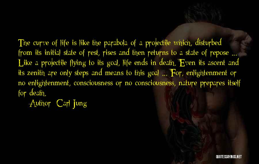 Disturbed Life Quotes By Carl Jung