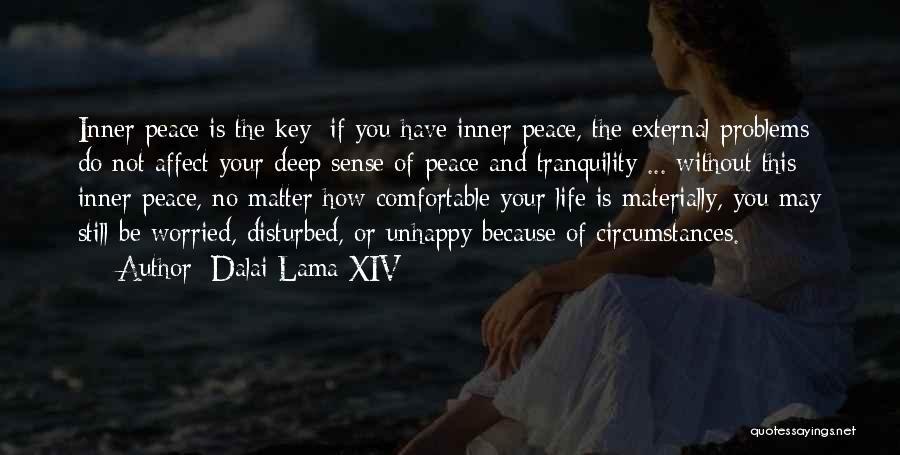 Disturbed Life Quotes By Dalai Lama XIV
