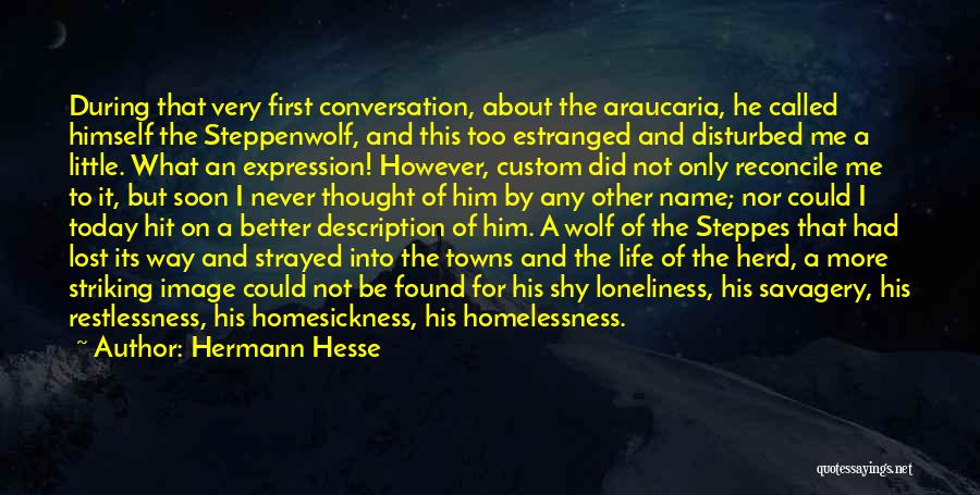 Disturbed Life Quotes By Hermann Hesse