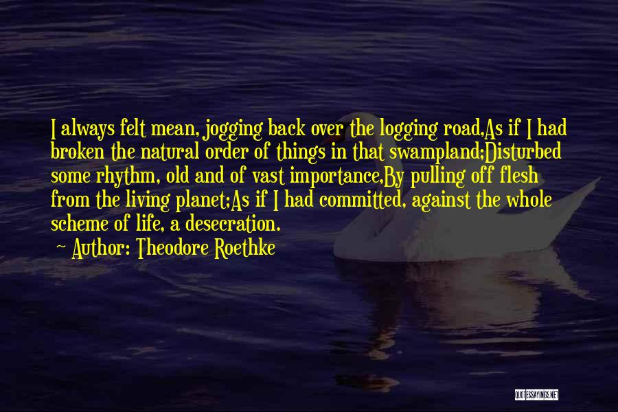 Disturbed Life Quotes By Theodore Roethke