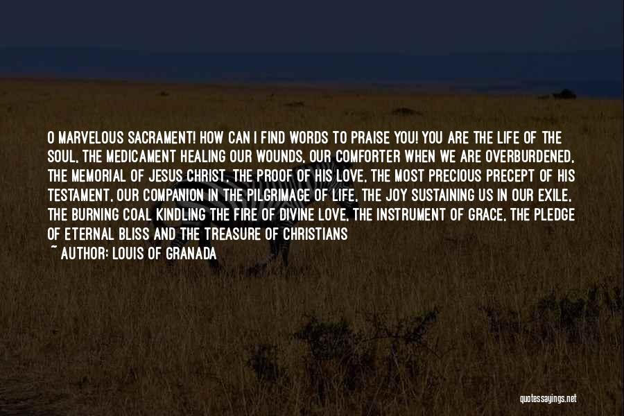 Divine Healing Quotes By Louis Of Granada