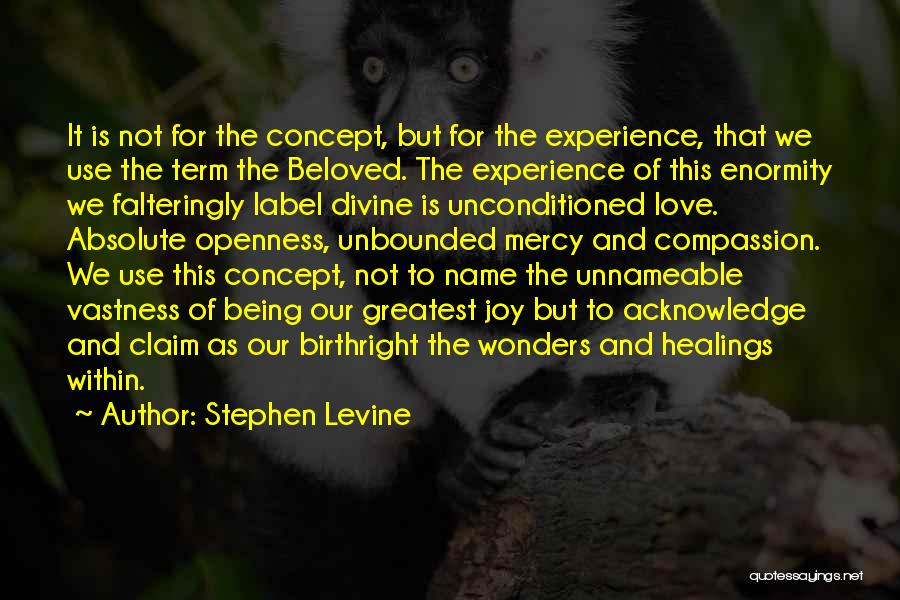 Divine Healing Quotes By Stephen Levine