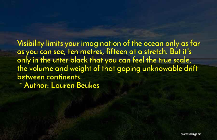 Diving In The Ocean Quotes By Lauren Beukes